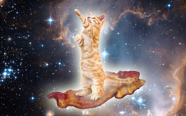 Cat Standing On Bacon In Outer Space