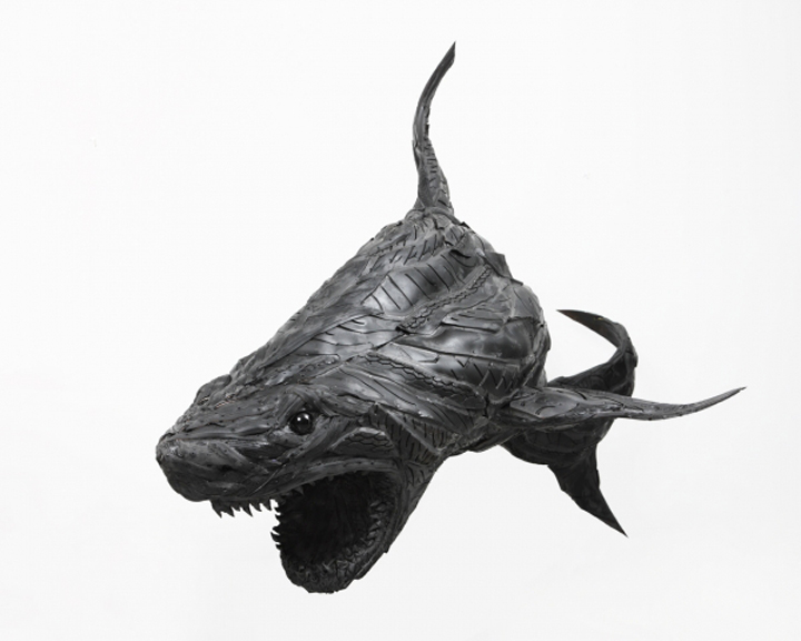 Crazy Shark Art