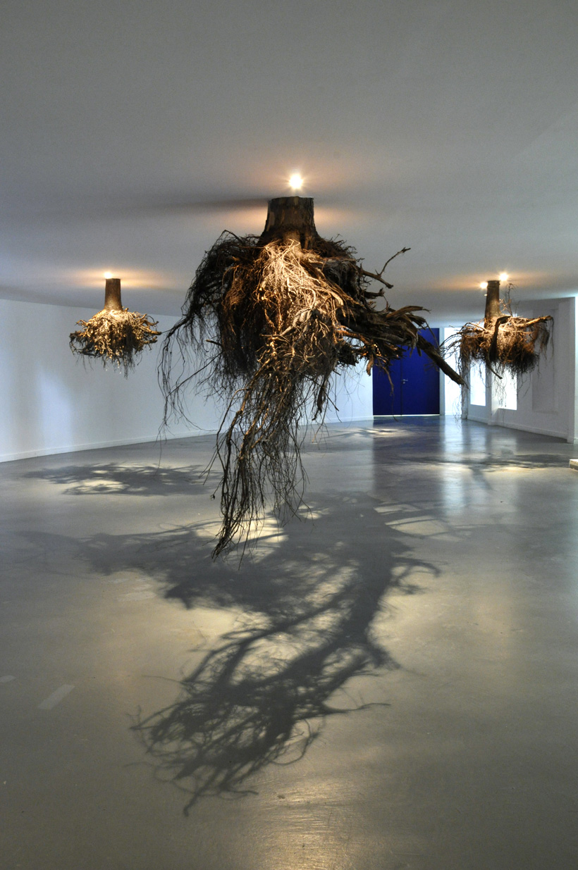Giuseppe Licari's installation with trees roots